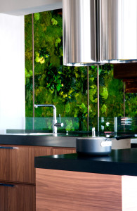Modern kitchen interior with green plants on background